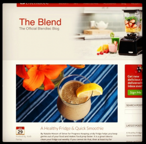 Look Who's Guest Posting at the Blendtec Blog!