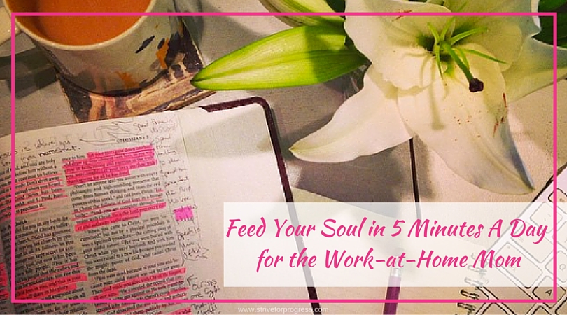 Feed Your Soul In 5 Minutes A Day for the Work at Home Mom