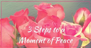 3 Steps to a Moment of Peace for the Work at Home Mama