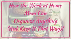 How the Work at Home Mom Can Organize Anything (And Keep It That Way)!