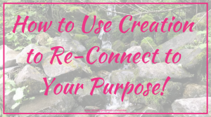 How to Use Creation to Re-Connect to Your Purpose!